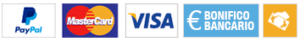 Icone pagamento